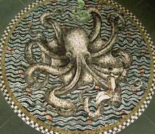 Octopus Garden – 2007